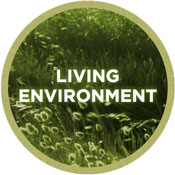 Theme 5: Improving the living environment and strengthening biodiversity