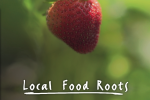 local-food-roots-300x300-300x284.png
