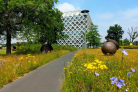 Shanghai Ranking 2019: WUR maintains its position as best university for agricultural sciences