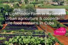 A Lighthouse Farm in Havana: Urban agriculture & cooperative food systems in Cuba